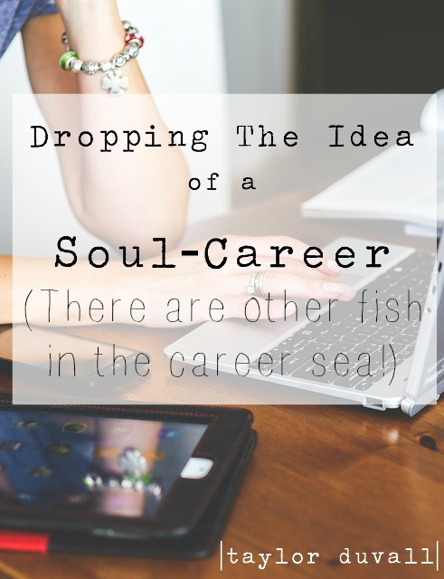 soul_career